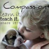 cropped-compassion-bulldog.jpg