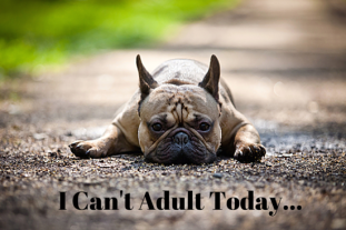 I_Cant_Adult_Today